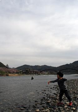 錦帯橋と一鴻