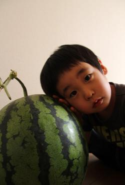 西瓜と一鴻